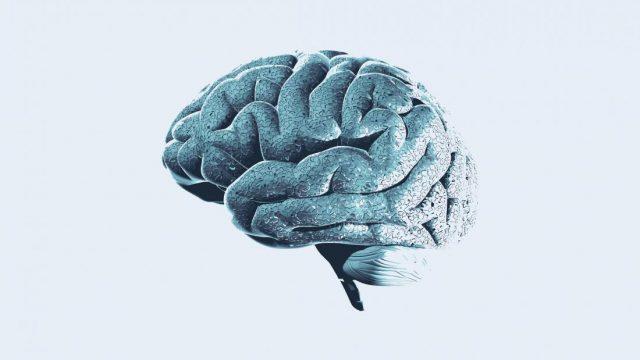 Alzheimer's: Synthetic protein blocks toxic beta-amyloid