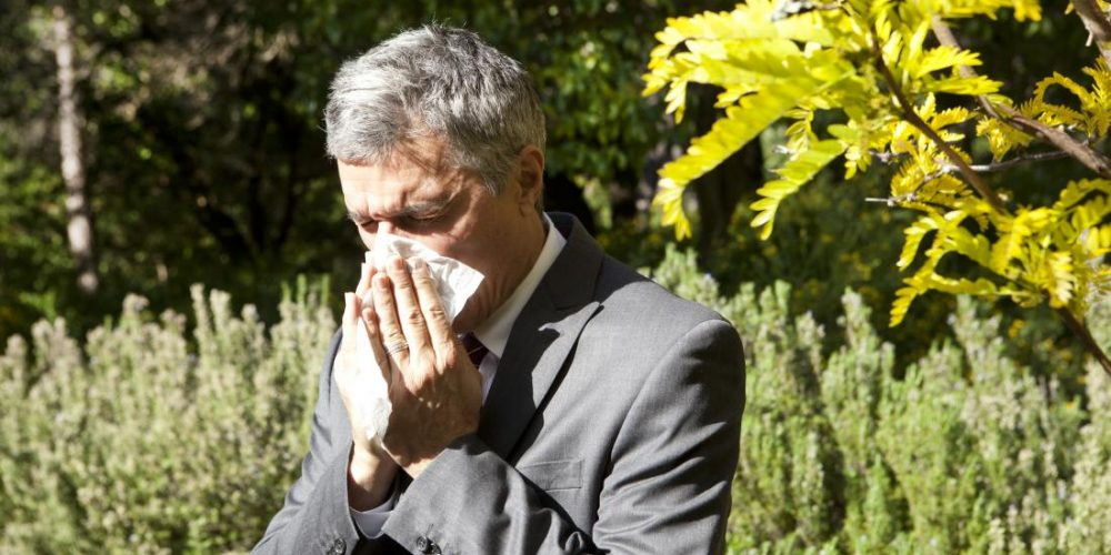 Pollen allergy: Causes, symptoms, and treatment