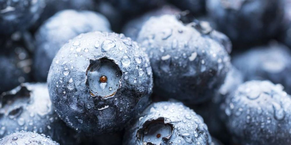 A guide to antioxidant foods