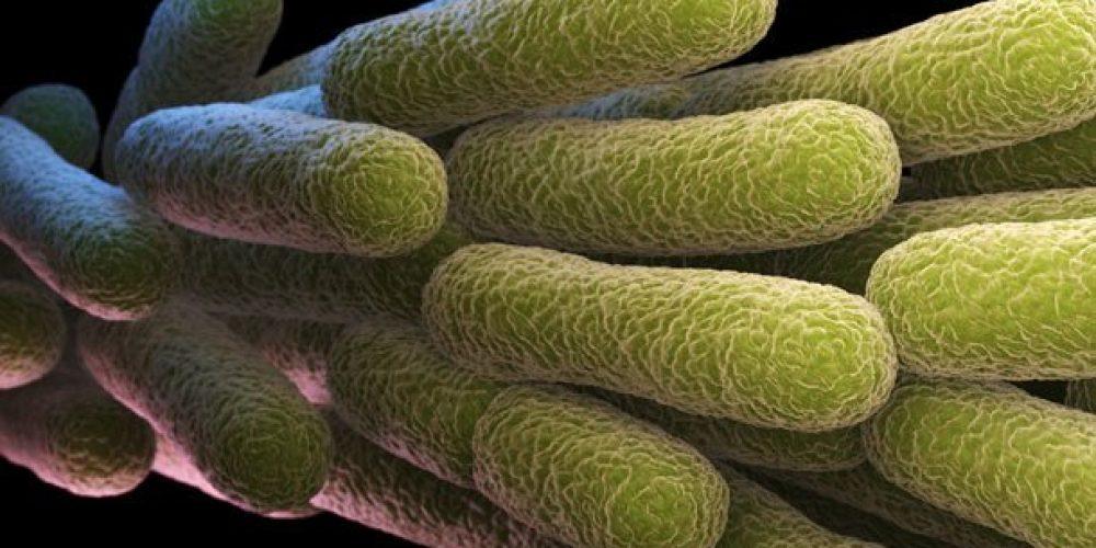 Justin Bieber: Lyme Disease and Chronic Mono