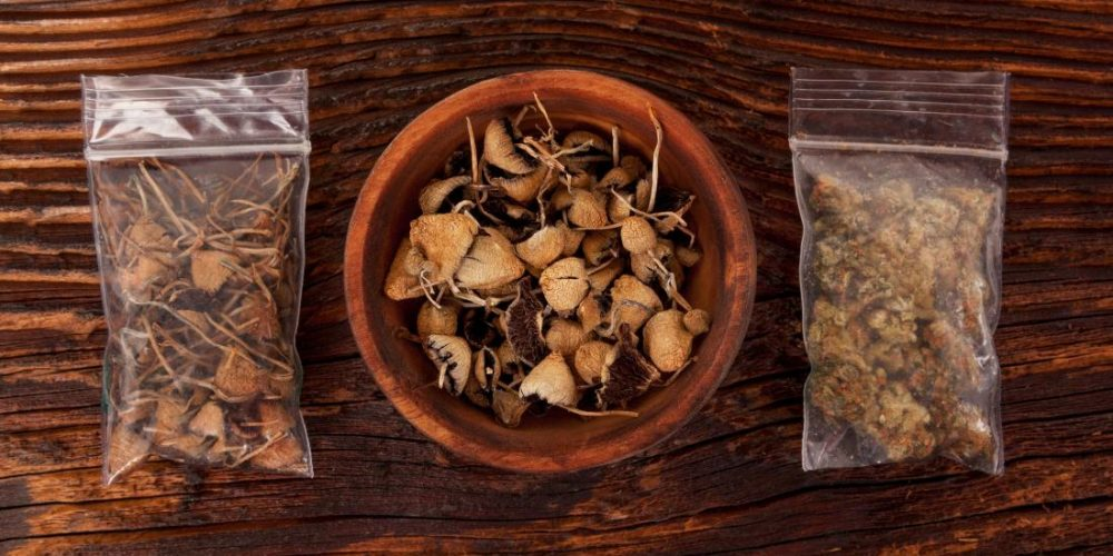 Psychedelics: Risks and benefits of microdosing revealed