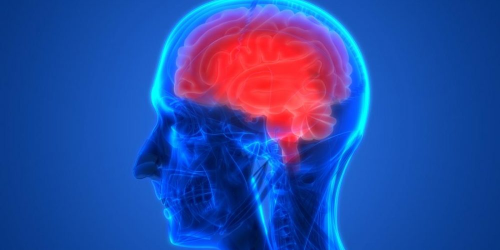 Researchers may stop Parkinson's by 'cooling off' brain
