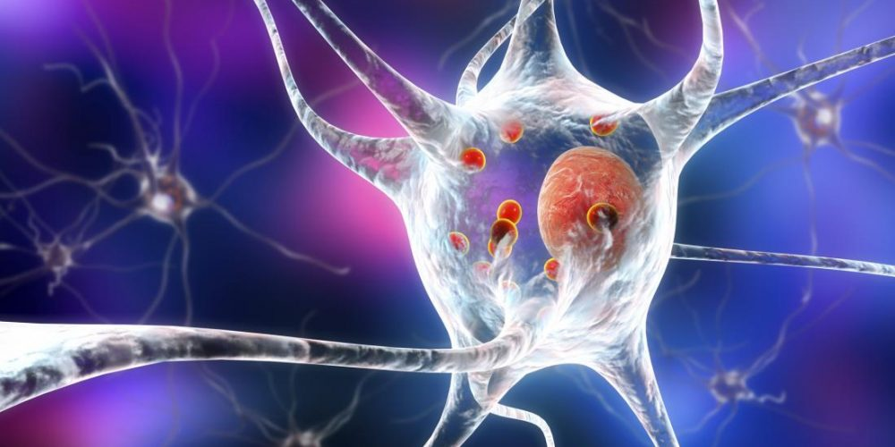 Scientists confirm the role of 'molecular switch' in Parkinson's disease