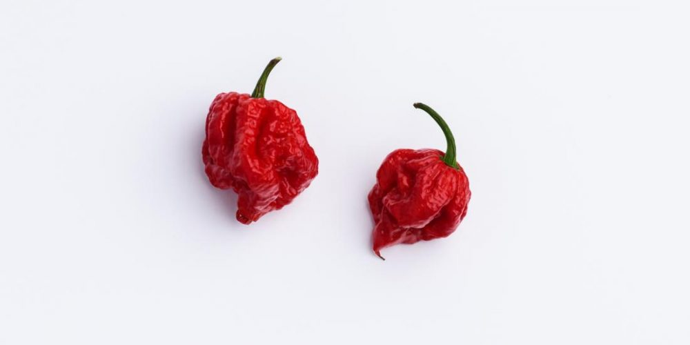 Thunderclap headache caused by the world's hottest chili pepper