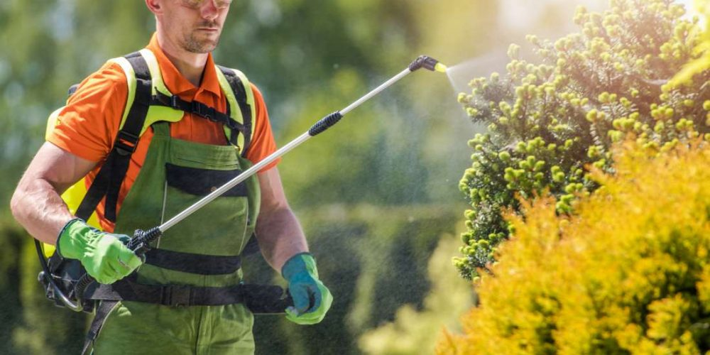 Common pesticide linked to increased mortality risk