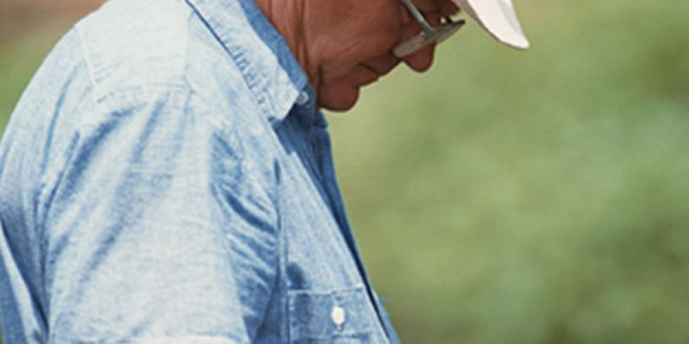 Hormone Treatment for Prostate Cancer Linked to Heightened Alzheimer's Risk
