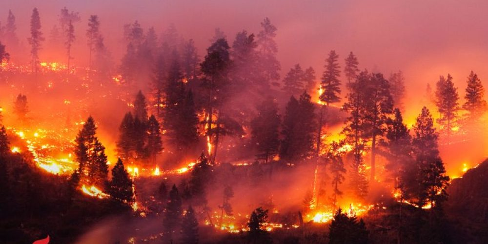 AHA News: Where There's Wildfire Smoke, There May Be Heart Problems
