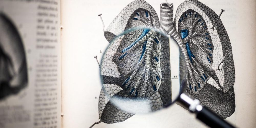 First-time evidence suggests that fat can accumulate in the lungs