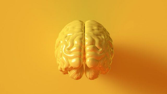 Is this a better way to deliver drugs to the brain?