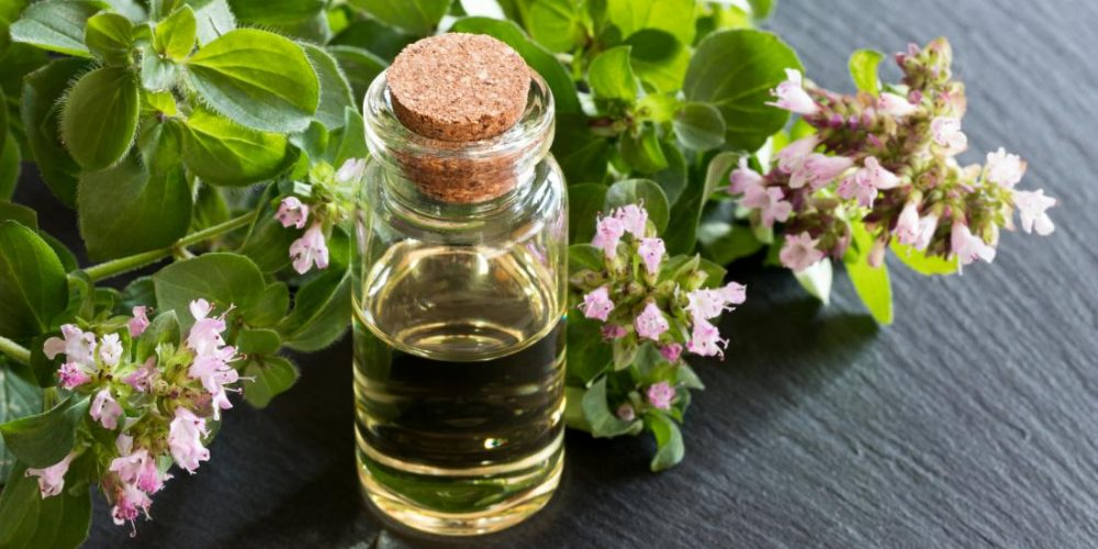 What are the benefits of oregano oil?