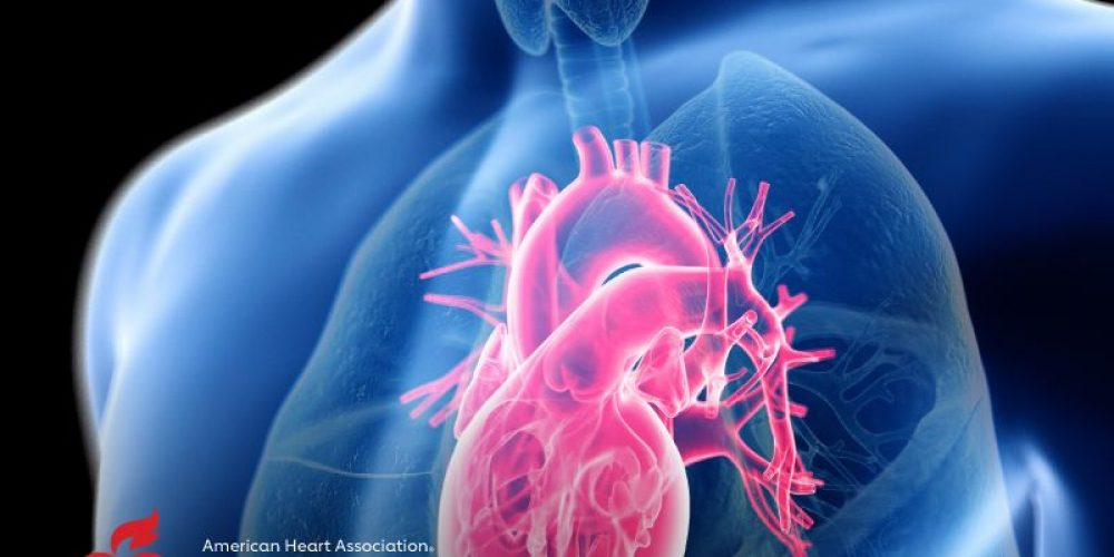 AHA News: HIV Could Increase Risk of Death From Heart Failure