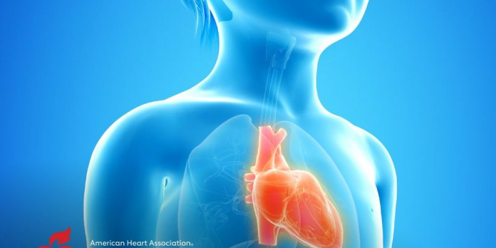 AHA News: Report Seeks Answers About Mysterious, Dangerous Heart Disease in Kids