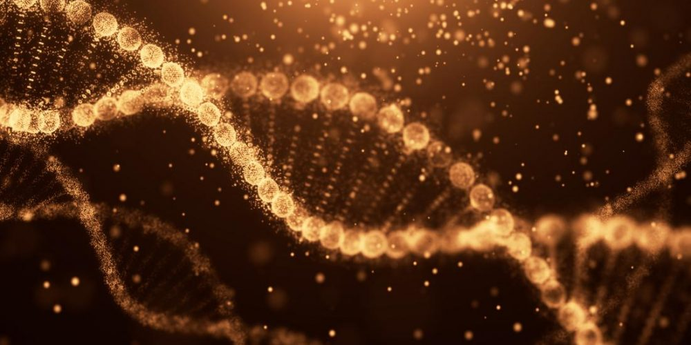 Could targeting variants of this gene help fight Alzheimer's disease?
