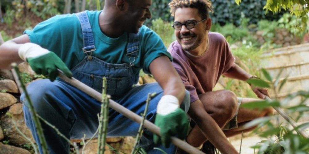 Farm-to-Table Movement Goes to School