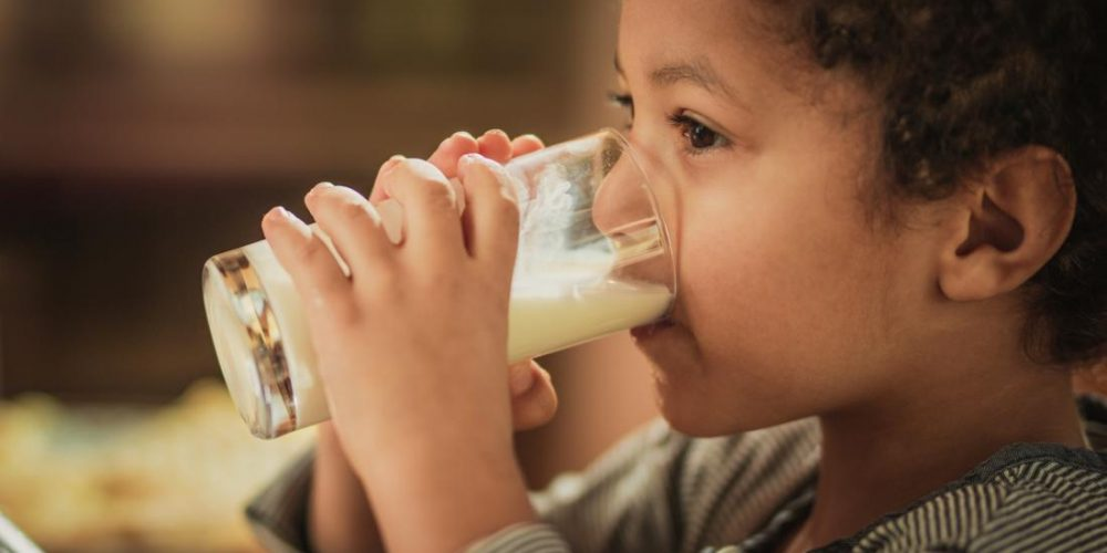 Healthy babies' gut bacteria prevent common food allergy
