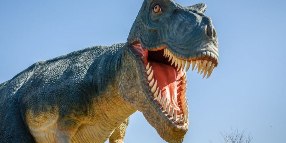 How Giant Dinosaurs Evolved to Stay Cool