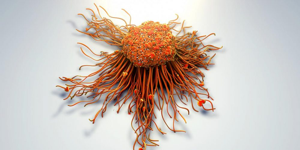 Stopping tumor cell movement halts cancer spread