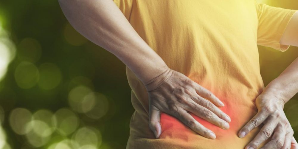 Tending to the diaphragm may relieve chronic low back pain