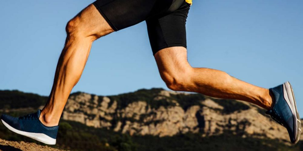 Tendons and ligaments: What is the difference?