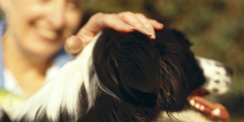 Your Furry Best Friend Might Extend Your Life